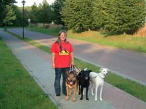 Zertifizierung – Hundeschule