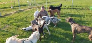 Zertifizierte Hundetrainerin Christiane Saalfeld