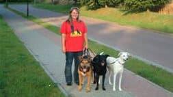 Christiane Saalfeld Training für Hunde